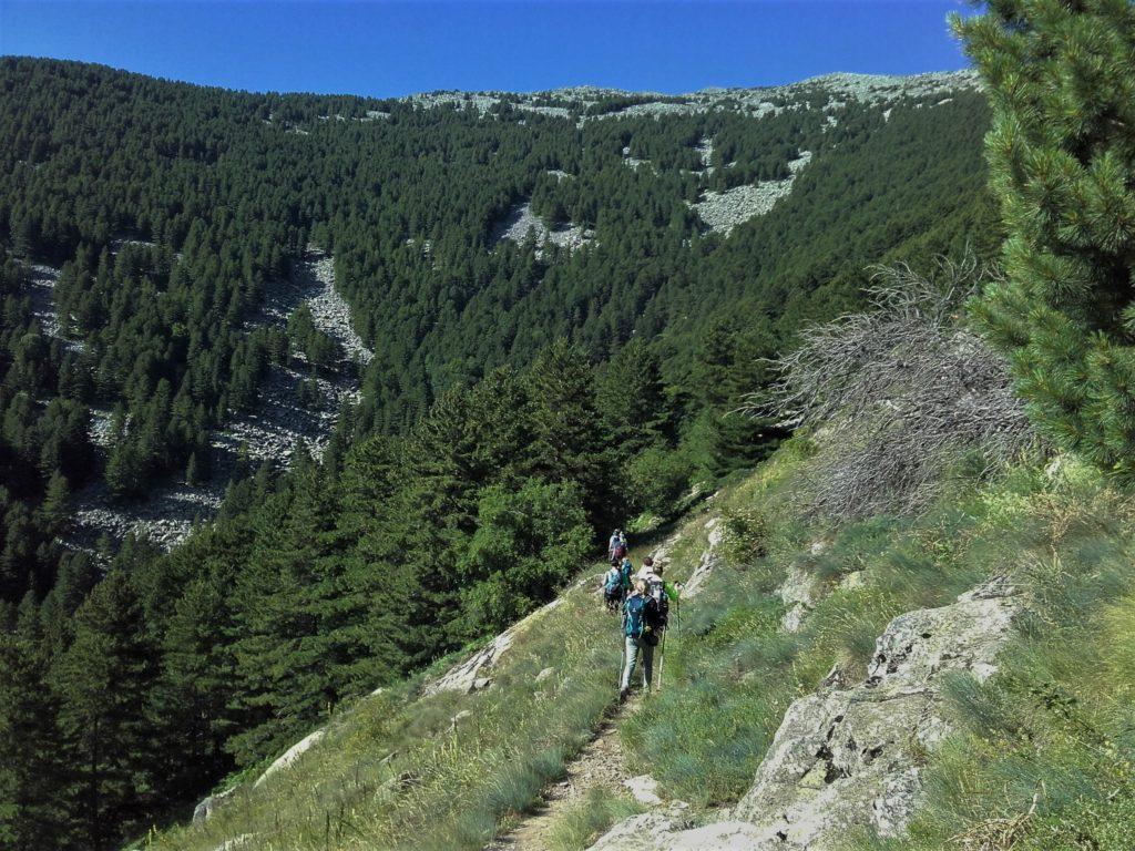 Pelister Makedonija planinarenje