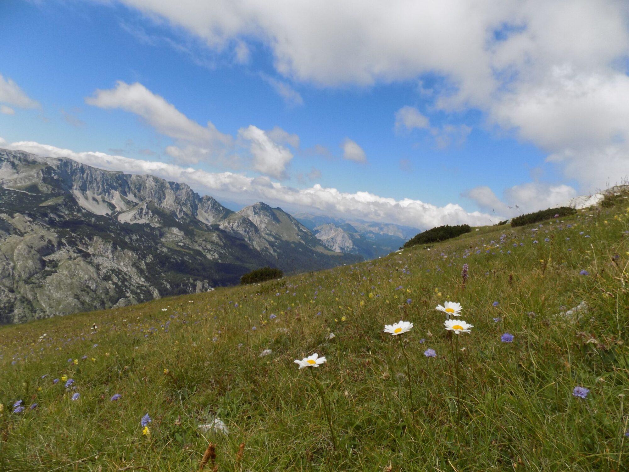 Maglić - Nacionalni park Sutjeska